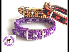 Adjustable dog collar - Modified Sanctified Square pattern paracord dog collar - YouTube