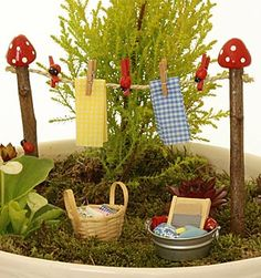 miniature garden - love the mushroom topped clothes line