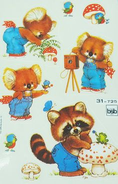 BSB Morehead koala, raccoon stickers