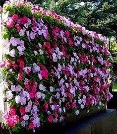 Wall Gardens and Supported Vertical Garden Ideas, Designs, Tips Wall gardens and vertical gardens are fabulous space savers for those with restricted backyard space. See how to design and use these wonderful gardens. Dream Garden, Garden Art, Garden Design, Small Gardens, Outdoor Gardens, Vertical Gardens, Do It Yourself Garten, Beautiful Gardens, Beautiful Flowers