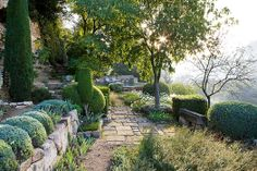 An iconic Provencal garden by Nicole de Vesian. Photo Clive Nichols.
