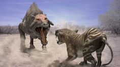 beasts - Google Search