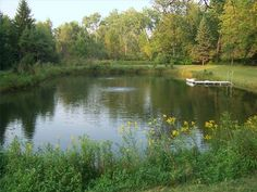 How to Make a Pond for Fishing