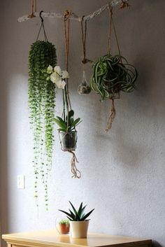 Interior Hanging garden.