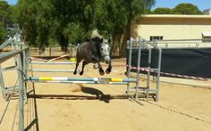 Free Jumping!