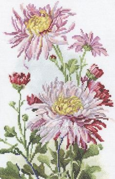 Pink Chrysanthemum Cross Stitch Kit
