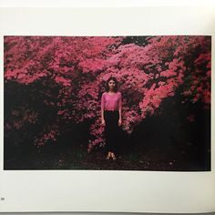 idea.ltd High on the list. Books we love LOVE love. Joel Meyerowitz Wild Flowers. The 1083 softcover first edition with the BEST cover. Super beautiful. Email if you want@ideanow.online #wildflowers #joelmeyerowitz #1983 2016/05/11 02:30:06