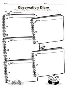 Observation Diary: Investigation Graphic Organizer for the Interactive Whiteboard Interactive Whiteboard, Interactive Notebooks, Student Teaching, Teaching Science, Classroom Supplies, Classroom Ideas, 5th Grade Science, Outdoor Education, Science Notebooks