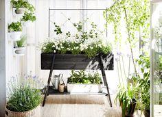Grow Box | Hasselfors Garden