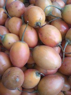 Tomato tree Tomato Tree, Onion, Fruit, Vegetables, Food, Onions, Essen, Vegetable Recipes, Meals