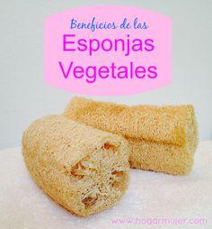 Sabes cuales son los beneficios del uso de las esponjas vegetales? #ecotips #salud #cuidadodelapiel #belleza