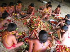 Yanomami - Indigenous Peoples in Brazil Tribes Of The World, People Of The World, Amazon People, Yanomami, Amazon Tribe, Human Bean, Salt Of The Earth, World Thinking Day, Amazon Rainforest