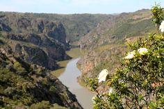 Ausblick auf den Duero Fluss