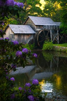 Floyd County Virginia the Blue Ridge Parkway. This is a photo of Mabry Grist Mill. Beautiful World, Beautiful Places, Beautiful Pictures, Wonderful Places, Old Grist Mill, Water Mill, Old Barns, Le Moulin, Belle Photo