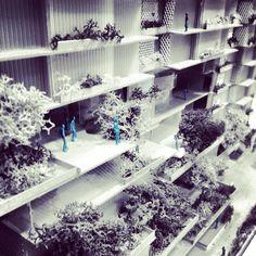 Muji housing