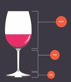 Wine Glasses Fit What Leonardo To Which Wine Cabernet Sauvignon, Pinot Noir, Wine Glass, Glasses, Tableware, Fit, Grab Food, Good Red Wine, Drink Wine
