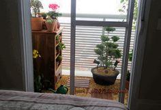 Ivani Kubo Paisagismo: E da cama eu vejo um jardim!