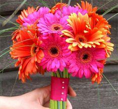 Flores Wedding Bouquets, Plants, Wedding Flowers, Weddings, Wedding Brooch Bouquets, Bridal Bouquets, Wedding Bouquet, Plant, Planets