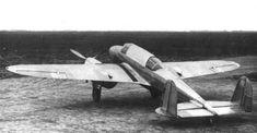 """samolotypolskie.pl - PZL-38 """"Wilk"""""""