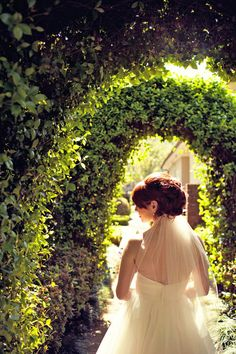River Oaks Garden Club wedding Pinterest Gardens Garden