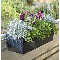 Optional iron hook holds the Zinc Rectangular Rail Planter, Bronze Rectangular Rail Planter, or Tidore Rectangular Rail Planter and easily affixes to railings or fences up to wide. Iron with powdercoat finish Accommodates rails up to wide Made in China Plastic Planters, Balcony Planters, Plastic Crates, Wooden Crate Shelves, Old Wooden Crates, Bamboo Planter, Wood Planters, Planter Ideas, Railing Planter Boxes