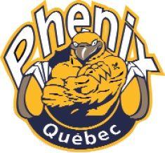 Phénix du Québec -Canadian Women's Hockey League- #PhénixduQuébec #QuebecCityQuebec #CWHL (L19690)