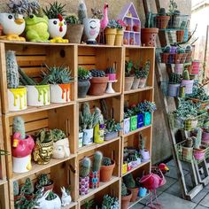 """2,273 Likes, 34 Comments - #Succulents_cactuslove (@lola_tiliches) on Instagram: """"Good afternoon #inmygarden ✨❤️♻️❄️✨ #plantshelfie #mijardin #recycle #jungalowstyle…"""""""