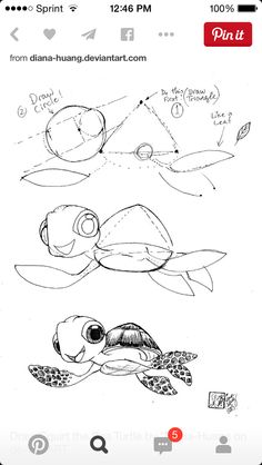 Turtle from nemo step by step drawing