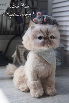 Beautiful Needle felting wool animal cute cat pet(Via @sofikapinus)