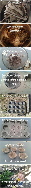 DIY Newspaper Seed Starting Cups