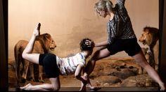 """Löwenstark  Das Ballett """"Lions, Tigers, and Women"""" in Bern"""