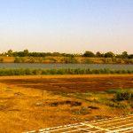 Khartoum, Sudan: Emergency e il fiume Nilo
