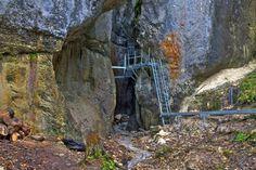Canionul Sapte Scari reprezinta un defileu sapat in calcare jurasice in partea central - vestica a Muntilor Piatra Mare ( cele mai mari si mai frumoase chei din M. Piatra Mare ) din judetul Brasov
