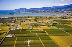 The vineyards of Richmond, with Nelson beyond, good view of our home town Abel Tasman, New Zealand Houses, New Zealand Landscape, Our Town, South Island, British Isles, Homeland, Nice View, Kiwi