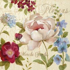 Marche Jardin different flowers, pretty, print.