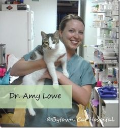 Learn about the trip Dr. Amy Lowe and technician Nancy Atchison took in Feb. 2015 to help the cats of Mexico City.