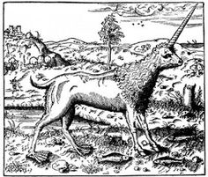 Camphor- Ethiopian myth: a single horned amphibious bovid that had webbed feet.