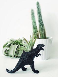 Small Black Tyrannosaurus Rex / T-Rex Dinosaur Planter with Air Plant Included! Perfect for home, work, or even a dorm! These dinosaur planters add tons of personality to any room! Air plants are very low maintenance and are perfect for low light environments such as offices, living rooms, bedrooms, bathrooms, and kitchens. Each item is handmade and made to order, therefore there may be slight variations/imperfections due to the handmade nature of the product. ⚡FUN FACT: Tyrannosaur...