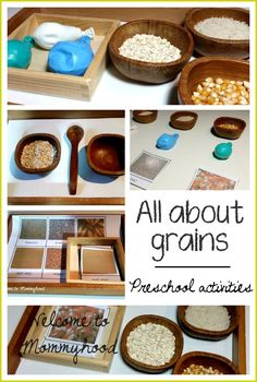 Montessori inspired all about grains printables, practical life, and sensorial activities