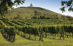 Nature of South Moravia, Czech Republic