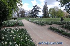 Loire Valley France- Chaumont domain http://allonfrance.com/road-trip-to-the-loire-valley-third-part/