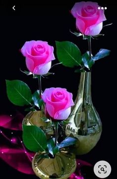 Good Evening Love, Good Evening Wishes, Good Evening Greetings, Good Night Beautiful, Good Night Wishes, Good Night Sweet Dreams, Romantic Evening, Photos Of Good Night, Good Night Love Images