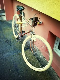 Moje kolo r.v. 1951