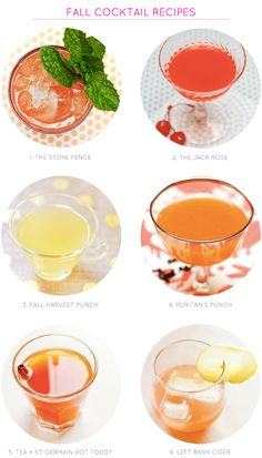 Fall Cocktail Recipes and Recipe Idea Round Up from Oh So Beautiful Paper