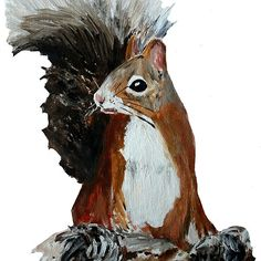 Red Squirrel Woodland Animal Acrylic Painting White Edit