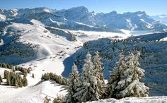 Cut price ski pass offer: thematuretraveller.co.uk - image courtesy Villars Tourist Office Snowboard, Ski Pass, Tourist Office, Fantasy Inspiration, Travel News, Mount Everest, Skiing, Images, Mountains