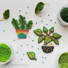 Encore des plantes vertes ! Mais j'aime tellement ça ! Le piléa de @lulu_la_lucette m'a donné envie de créer d'autres motifs. Je me suis inspirée pour ces deux petits modèles d'une illustration de @sarahwalshmakesthings . Allez voir son profil si vous ne connaissez pas, ses illustrations sont superbes ! #miyuki #miyukiaddict #miyukibeads #perlesmiyuki #perlesaddict #perlesaddictanonymes #perlezmoidamour #jenfiledesperlesetjassume #jenfiledesperlesetjaimeca #jesuisunesquaw #handma...