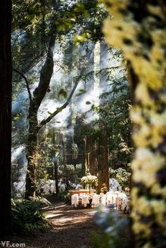 Lord of the Rings Wedding Reception Decor ... this would be interesting for a small reception...