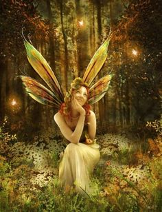 Delightful fairy