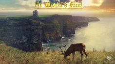 Faolan - At World's End [At World's End]